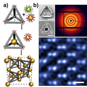 Realizing Diamond-Shaped Nanoparticle Superlattices